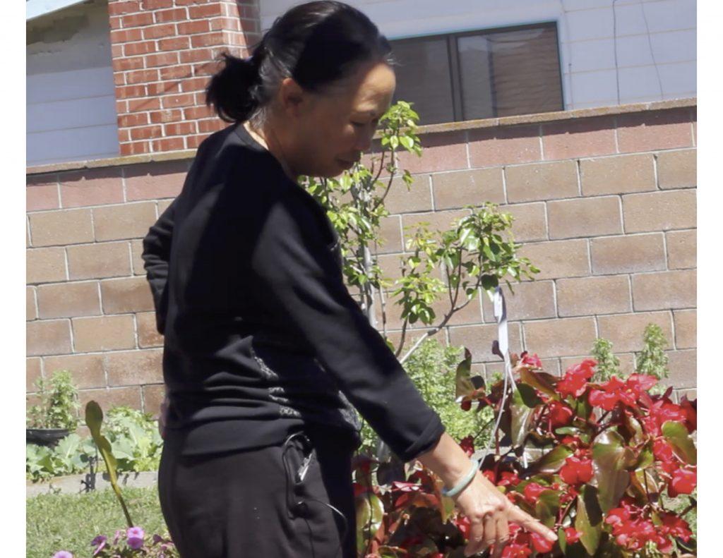 2019: Grandma Say Tang working in her backyard garden