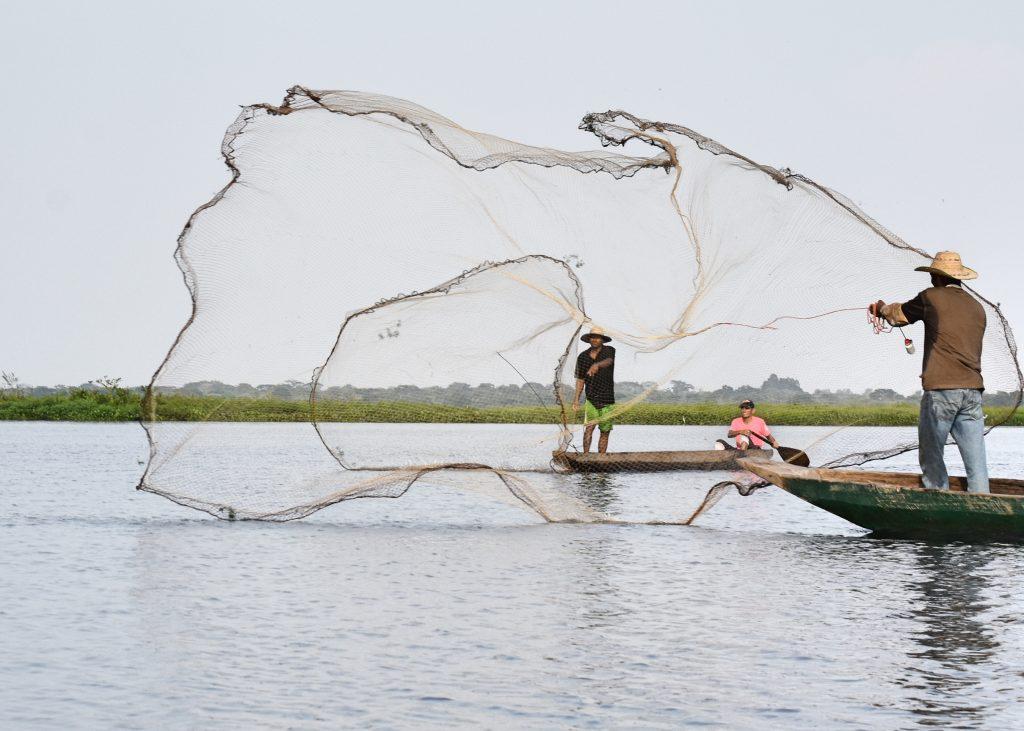 2018: Fishing