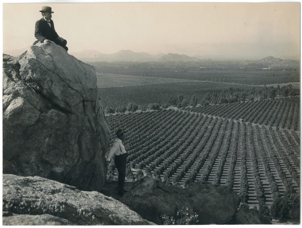 Vistas of citrus groves helped promote the region as the Orange Empire by the 1910s.